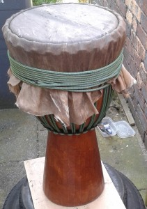 ferns drum